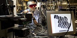 Influential Nano Role