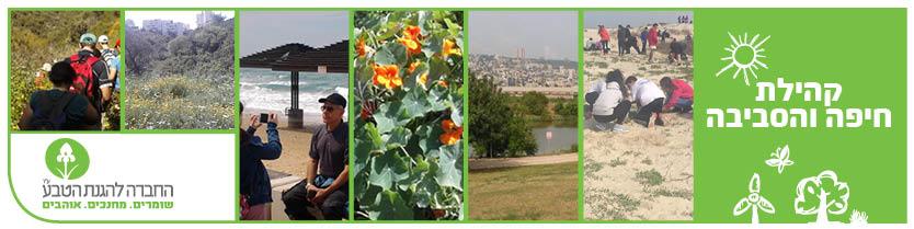קהילת חיפה והסביבה