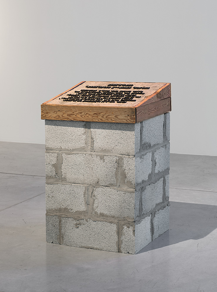 Shelly Federman, Monument to the Unknown Construction Worker, 2011