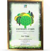 b_certificate