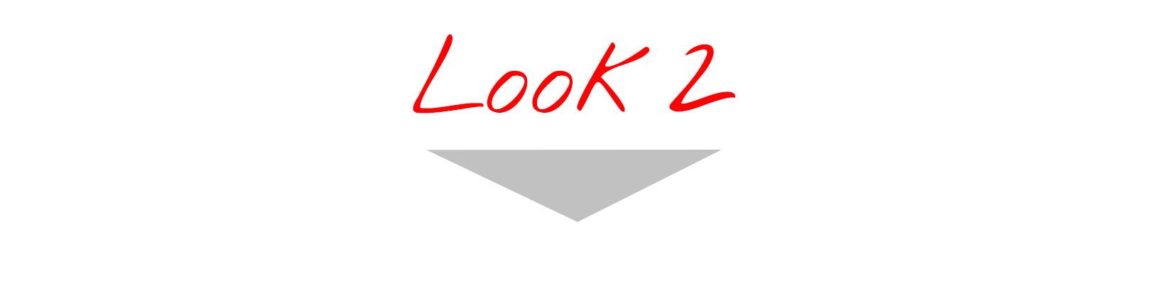 Look n°2